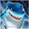 Water Charger Shark Aqcus Image